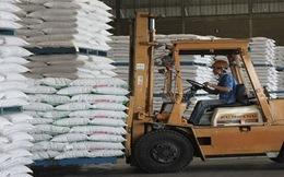Tính đến 15/7, các nhà máy còn tồn kho gần 460.000 tấn đường