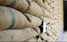 Thái Lan có thể mất 2,24 tỷ USD vì gạo lưu trữ bị hỏng