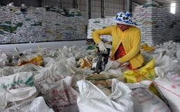 Sri Lanka đề nghị nhập khẩu 15.000 tấn gạo từ Việt Nam