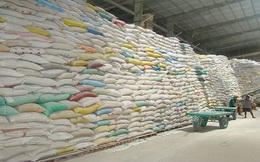 Tạm trữ gạo còn chậm chạp