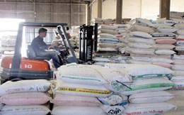 Không áp dụng thuế VAT với thức ăn chăn nuôi