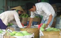 """Trái cây Thái Lan """"tung hoành"""" chợ Việt: Cây nội địa có thể """"chết"""""""