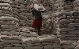 Philippines bắt giữ hơn 1.000 tấn gạo nhập lậu