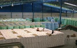 Thái Lan: Đấu thầu gạo liên tiếp thất bại