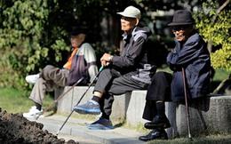 Bi kịch của người già Hàn Quốc