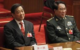 Đằng sau chiến dịch chống tham nhũng của Trung Quốc