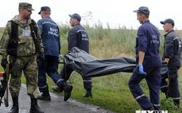Nga nhấn mạnh cần có một cuộc điều tra quốc tế về vụ MH17