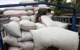 Doanh nghiệp Việt giảm phụ thuộc Trung Quốc, đón TPP