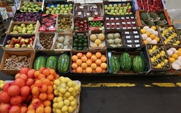Cấm nhập khẩu thực phẩm sẽ có lợi cho ngành nông nghiệp Nga