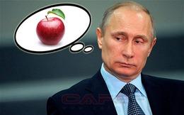 Nga ngừng nhập khẩu nông sản: Nước nào thiệt hại nặng nề nhất?