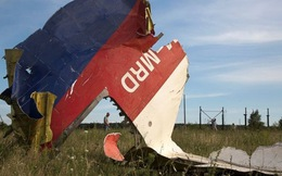 Gia đình nạn nhân Đức trên máy bay MH17 kiện Ukraine