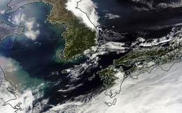 Bão Vongfong tấn công vào Nhật Bản, hàng chục người bị thương