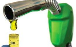 Bộ Tài chính: Lẽ ra giá dầu diesel và dầu hỏa phải tăng