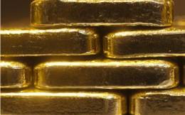 Đấu thầu vàng – sân chơi chưa bình đẳng