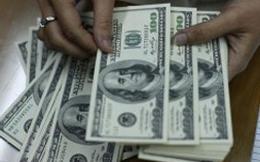 """JPMorgan Chase: """"Tỷ giá USD/VND năm nay sẽ ổn định"""""""