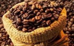 Nông dân găm hàng, giá cà phê xuất khẩu tăng mạnh