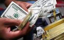 Giá vàng tiếp tục rơi xuống 35,6 triệu đồng/lượng, USD ngân hàng tăng nhẹ