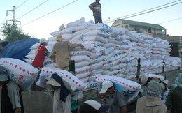 Nhập khẩu phân bón từ Trung Quốc chiếm tới 49%