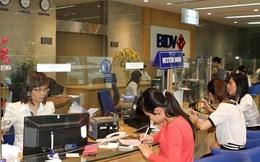 BIDV lãi 4.065 tỷ đồng trong năm 2013, tài sản tăng 13%