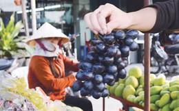 Trái cây Trung Quốc át trái cây nội địa