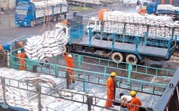 Teo tóp thị trường xuất khẩu gạo