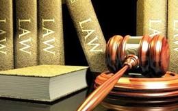 Quảng Nam: Khởi kiện 213 vụ án tín dụng, thất thoát gần 1.000 tỷ đồng