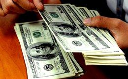 Tỷ giá USD/VND: Nóng ngân hàng, yên ắng 'chợ đen'