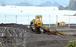 Nhập khẩu than: Nghịch lý được báo trước