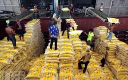 Thái Lan lỗ bao nhiêu trong toàn bộ chương trình trợ giá gạo?