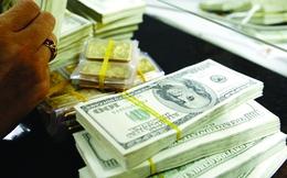 Ngày 19/11: USD ngân hàng và tự do cùng hạ nhiệt sau thông điệp từ NHNN
