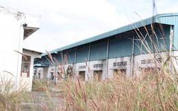 Agribank Đồng Nai: Vung tay cho vay, ngập đầu nợ xấu