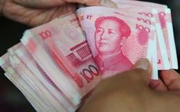 Thận trọng với đề xuất cho thanh toán sử dụng NDT ở Việt Nam