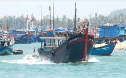 Quảng Nam: Hỗ trợ tín dụng hơn 700 tỷ đồng đóng tàu cá