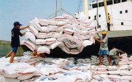 Xuất khẩu gạo chạm ngưỡng 7 triệu tấn