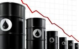 Chính phủ chỉ đạo theo dõi chặt chẽ diễn biến giá dầu, tránh thâm hụt ngân sách
