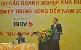 """Phó Thủ tướng Vũ Văn Ninh: """"Cái gì DN tư nhân làm được, DNNN phải rút lui"""""""
