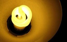 Rạng Đông vụt sáng, Điện Quang tắt đèn