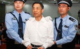 Về Trùng Khánh nghe dân nói về Bạc Hy Lai