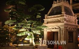 Vườn cây triệu đô trong khuôn viên lâu đài đại gia Phủ Lý