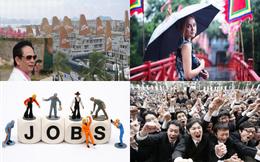 [Nổi bật] Chữ tín của 'Chúa đảo' Tuần Châu, 10 ngành 'hot' nhất nửa đầu năm 2014