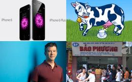 [Nổi bật] Apple của Tim Cook vừa chào đời đêm qua, tại sao các đại gia nuôi bò?