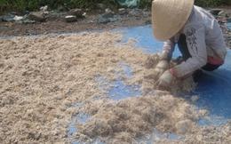 Phát hiện 4 tấn da bò dạng sợi giống hệt mực xé