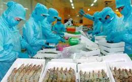 Xuất khẩu thủy sản trong năm mới sẽ gặp nhiều khó khăn