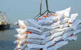Khó xây dựng thương hiệu gạo