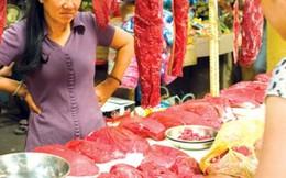 Hàng ngàn tấn thịt trâu nhập về mỗi tháng