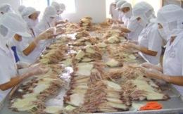 XK bạch tuộc đông lạnh sang Hàn Quốc tăng mạnh