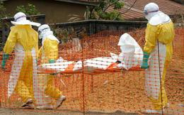 10 người Việt đang trong vùng có dịch Ebola