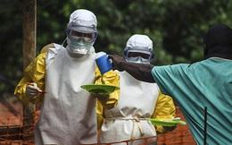 Bác bỏ thông tin có ca nhiễm Ebola ở Việt Nam