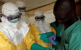 Thế giới cần bao nhiêu tiền để dập dịch Ebola?