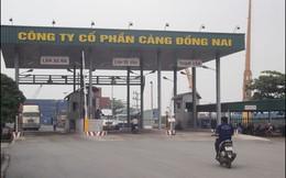Cảng Đồng Nai: 6 tháng EPS đạt 3.125 đồng